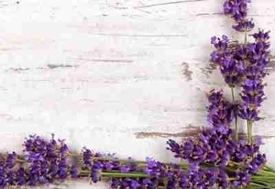 Advanced Aromatherapy Course