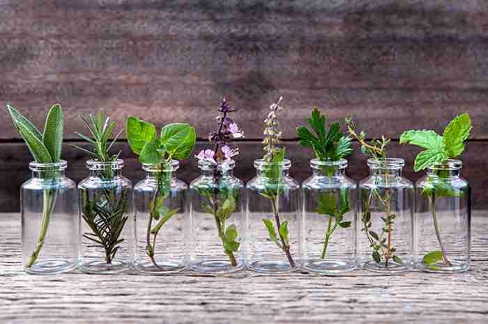 aromatherapy parties