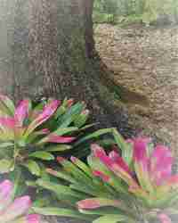 Enchantment Botanical Perfume, .33oz.