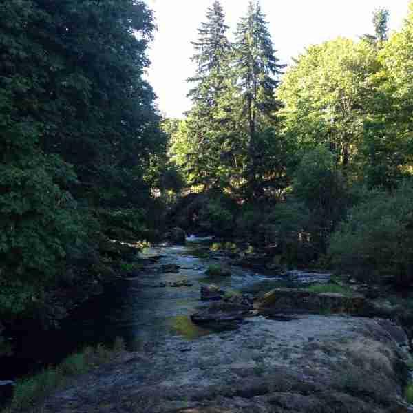 MountainMan Botanical Cologne, .33oz.