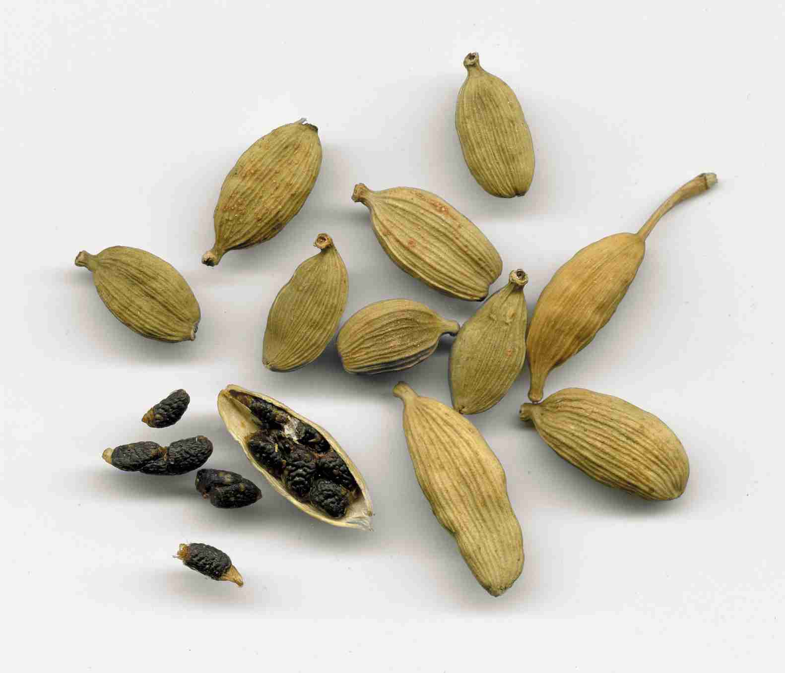 Cardamom - The Chi Enhancing Oil