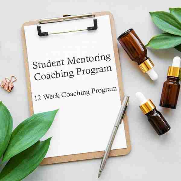 Student Mentoring Coaching Program