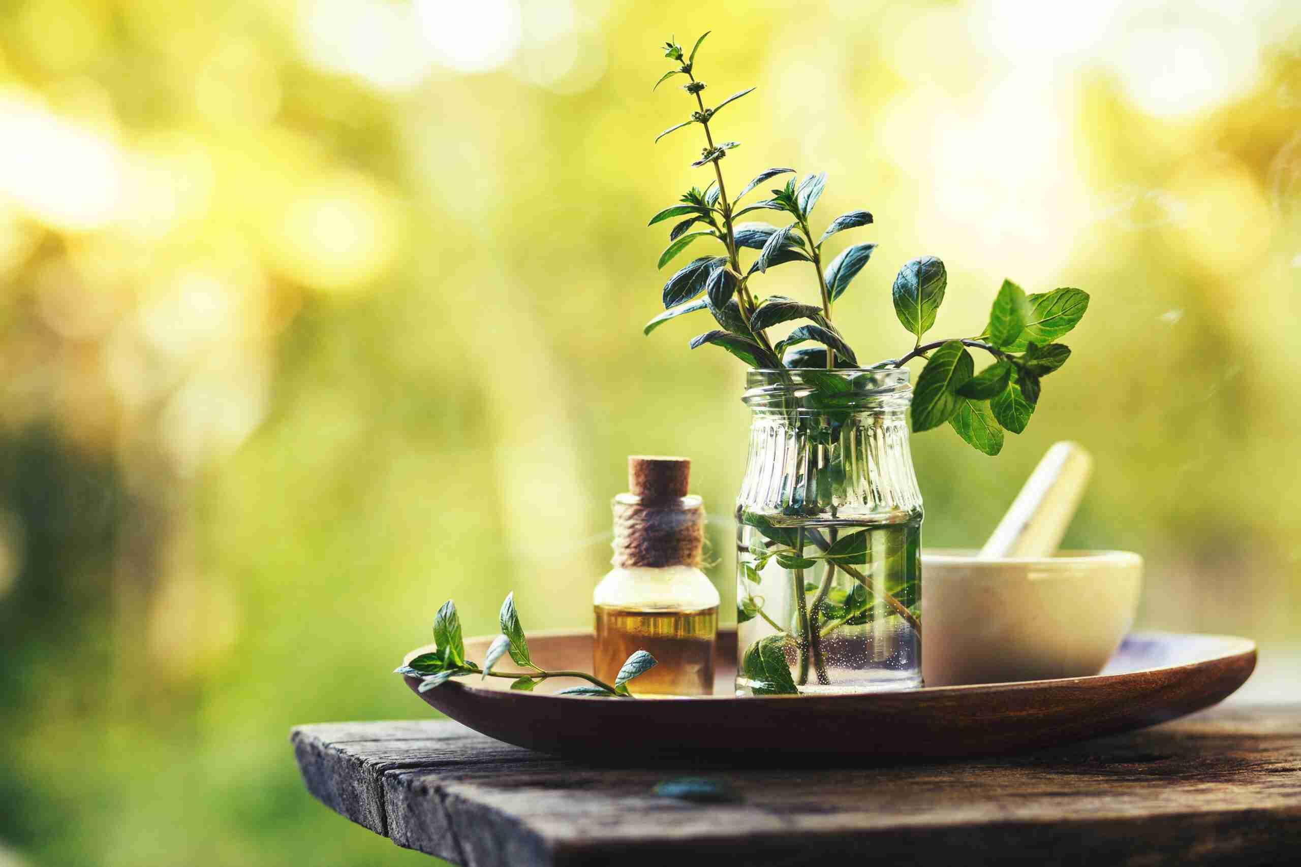 Essential Oils for the Respiratory System